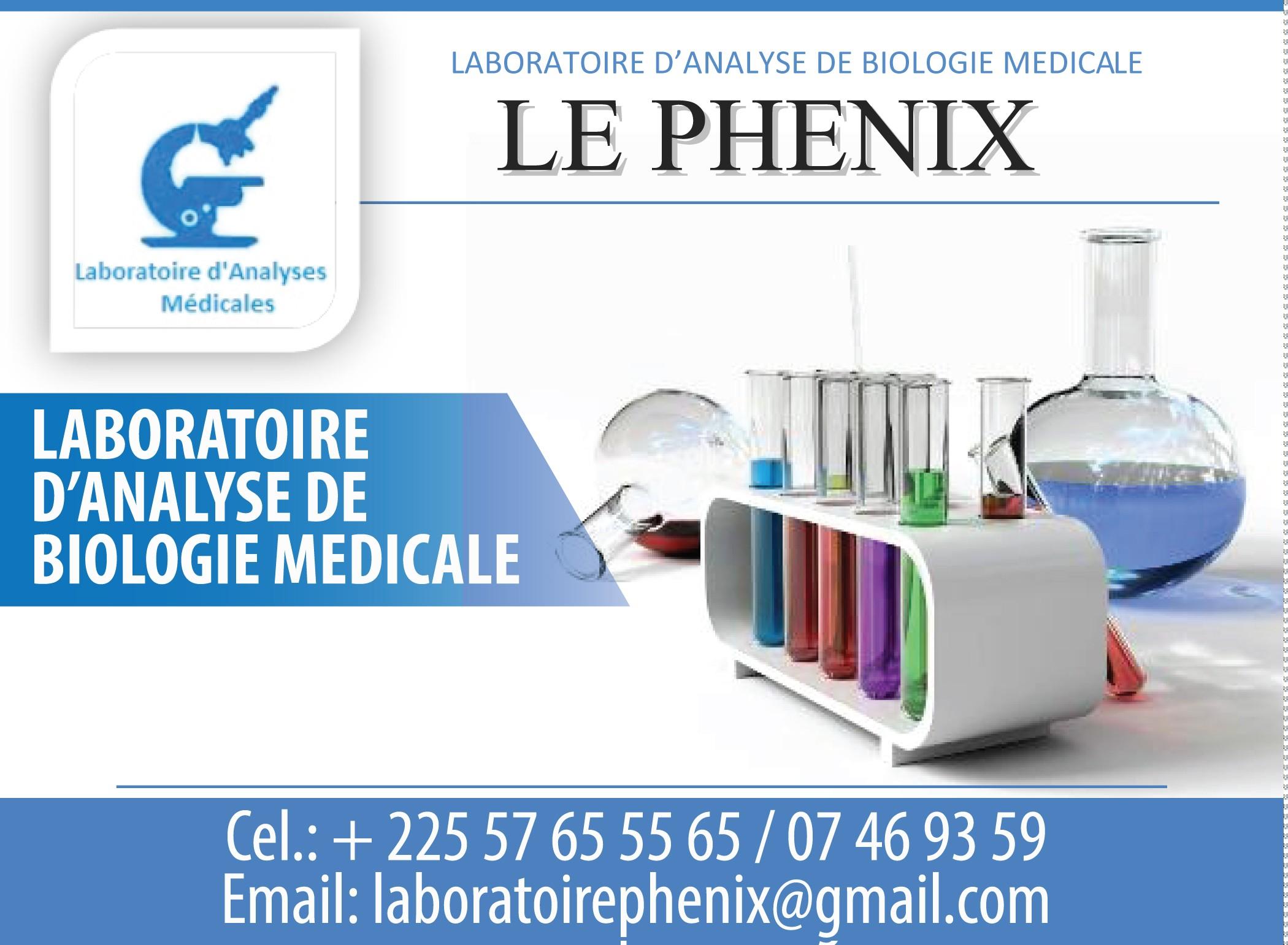 laboratoire d 39 analyse de biologie medicale le phenix laboratoires d 39 analyses m dicales. Black Bedroom Furniture Sets. Home Design Ideas