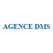 AGENCE DMS (DAVY MULTI SERVICES)