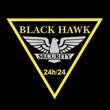 BLACK HAWK SECURITY