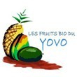 LES FRUITS BIO DU YOVO