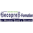 GECOPRES - FORMATION (Georges Conseils et Prestations)